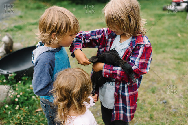 Three children look at the wing of a duck