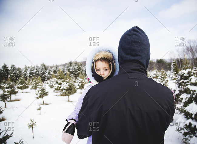 Father holding his daughter while walking through a tree farm