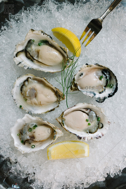 A plate of oysters on ice