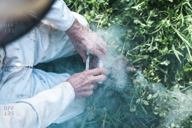 Beekeeper squeezing the bellows of a bee smoker