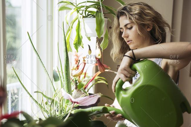 Woman watering her plants by window
