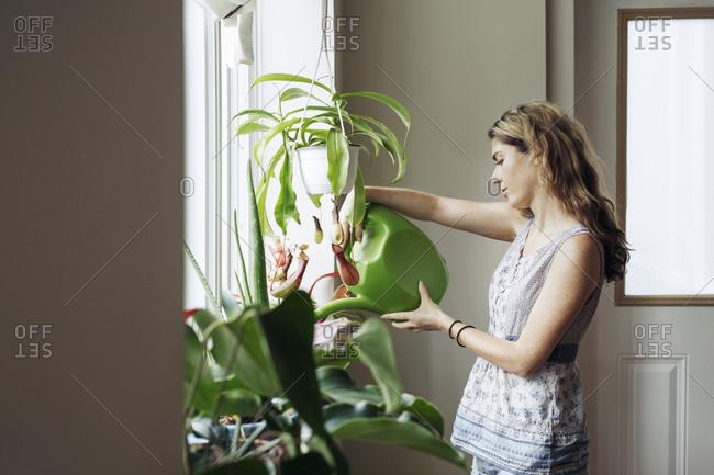 Woman watering plants by window