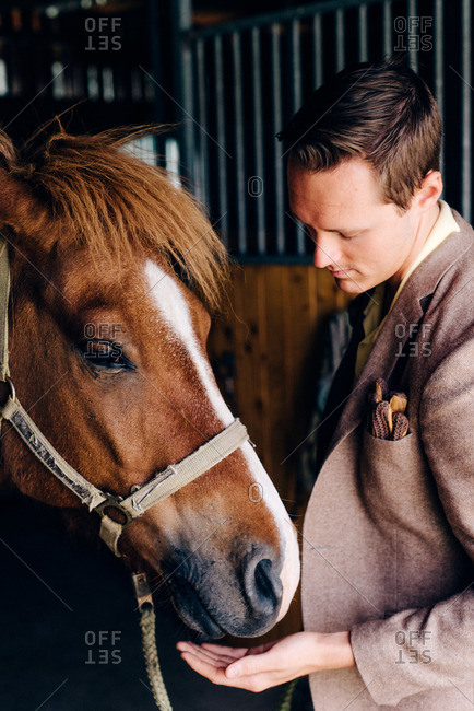 Young man holding his hand under a horses muzzle