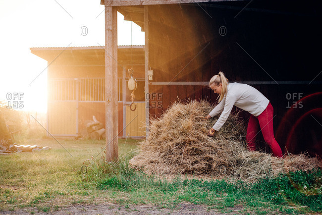 Woman gathering hay outside a horse barn