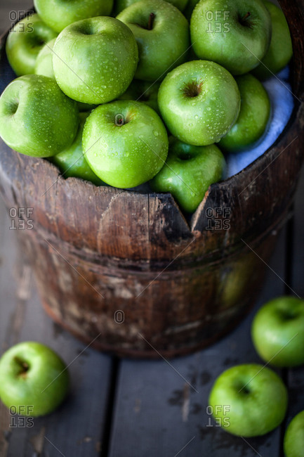 A pail of Granny Smith apples