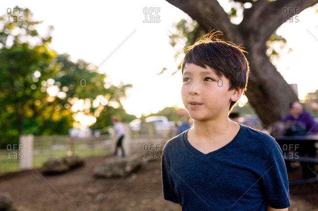 Boy standing under a tree in a park