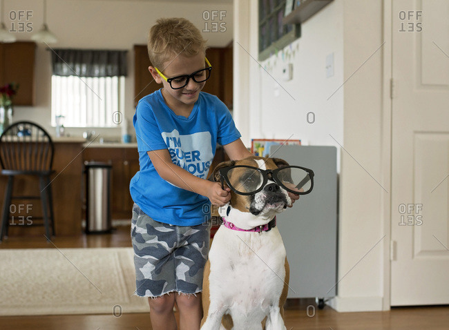 A young boy with glasses putting a giant pair of toy spectacles on his dog