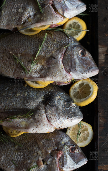 Whole fish on tray with lemons and herbs