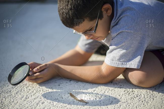 Hispanic boy burns a leaf with a magnifying glass