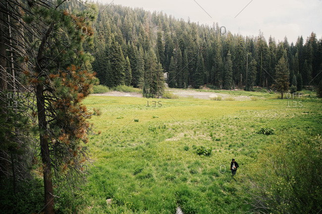 Man walking across a grassy field in the wilderness