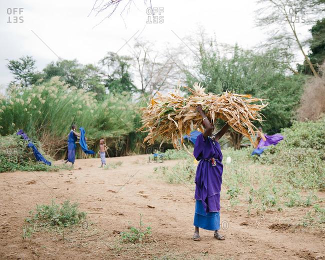 Tanzania - circa June 2012: A woman carries corn stalks on her head