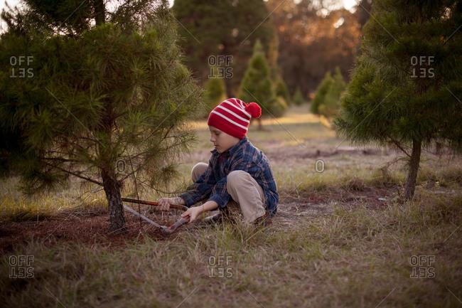 Boy with hand saw cutting down tree