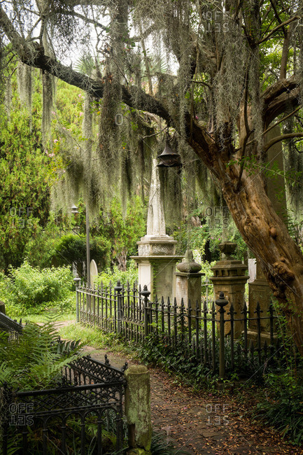 Old church graveyard in Charleston, South Carolina