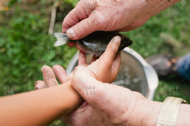 Grandfather handing fish to his grandson