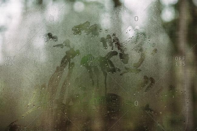 Handprints in condensation on a window