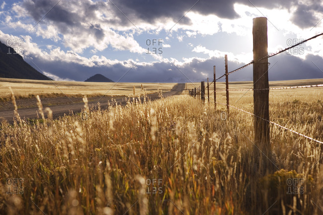 Road through plains in Wyoming