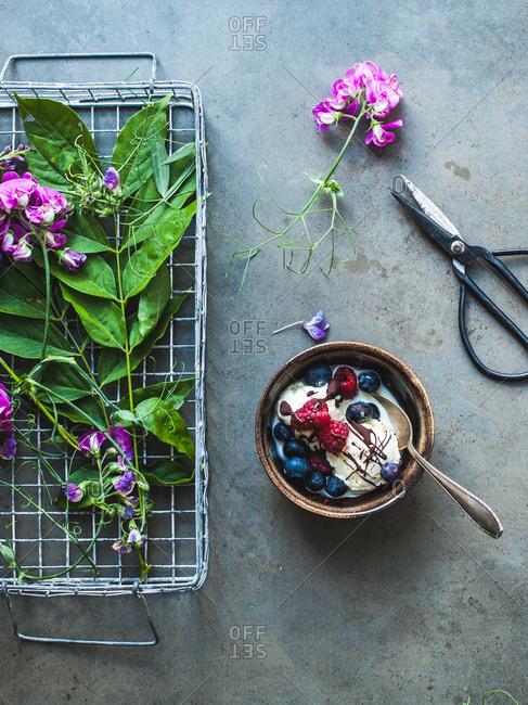 Homemade vanilla ice cream topped with berries and dark chocolate