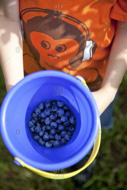 Child holding bucket of blueberries