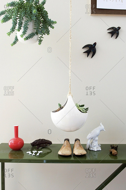 Plants, wooden shoes and various d�cor items