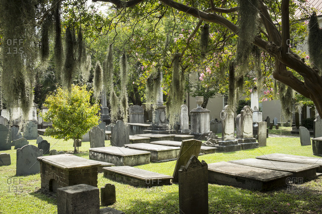 A graveyard with trees covered in Spanish moss