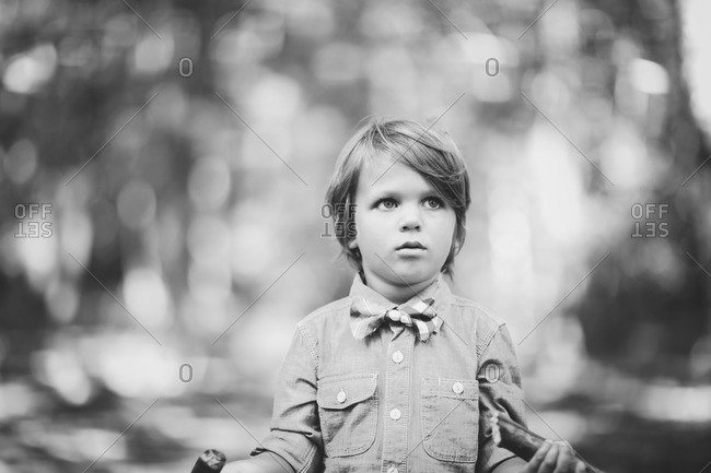 A boy in a bowtie stands in the wood