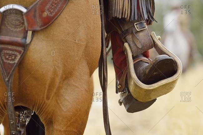 Close-up of cowboy riding horse with foot in Stirrup, Wyoming, USA