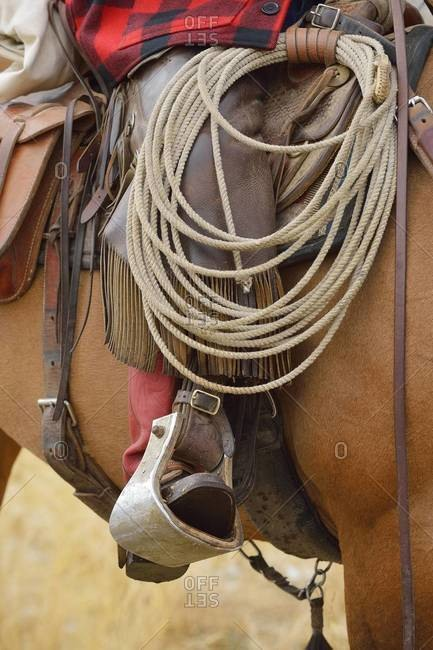 Close-up of cowboy riding horse with footin Stirrup, Wyoming, USA