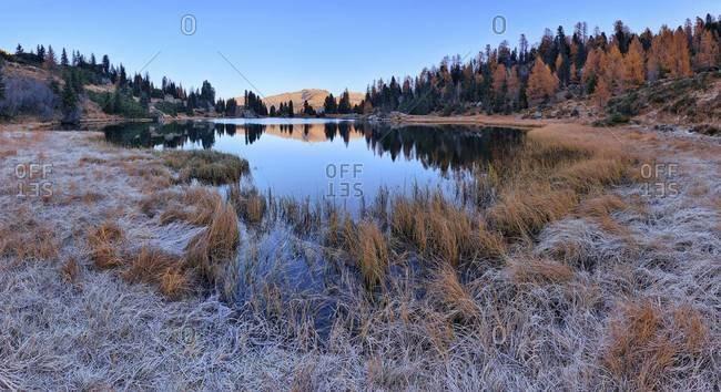 Laghi di Colbricon in Autumn, Passo Rolle, Parco Naturale Paneveggio Pale di San Martino, Trentino-Alto Adige, Dolomites, Italy