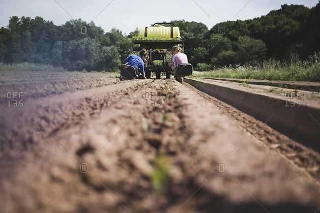 Two women ride on the back of a tractor planting seedlings