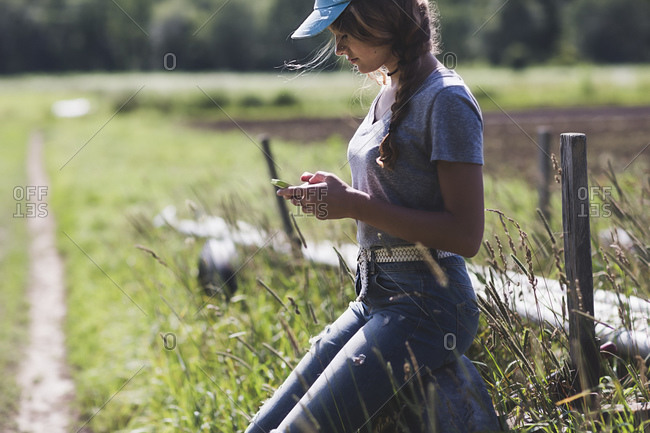 A farmhand takes a break to check her phone
