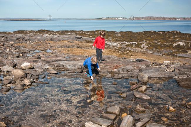 Boys exploring a shallow tidal pool