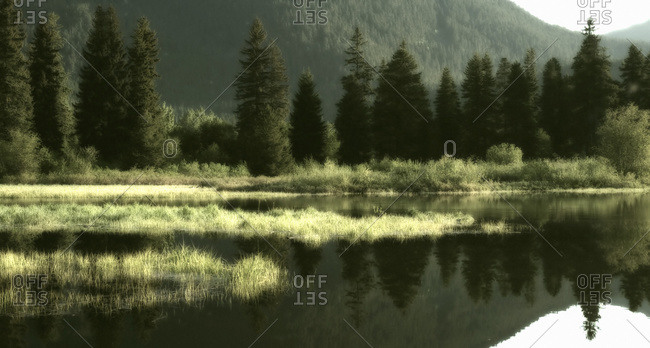 Green Lake And Reflection, Whistler, Bc Canada