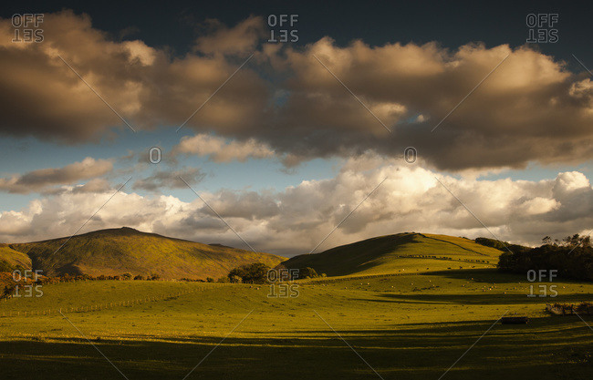 Clouds casting shadows on a hilly landscape with sheep grazing on the hillside, Northumberland, England