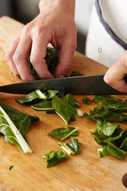 Woman slicing bok choy leaves