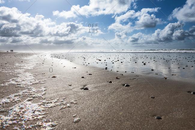 A flat wet shore