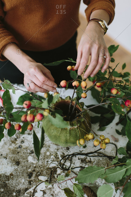 Woman arranging apple branches with baby apples in a vase