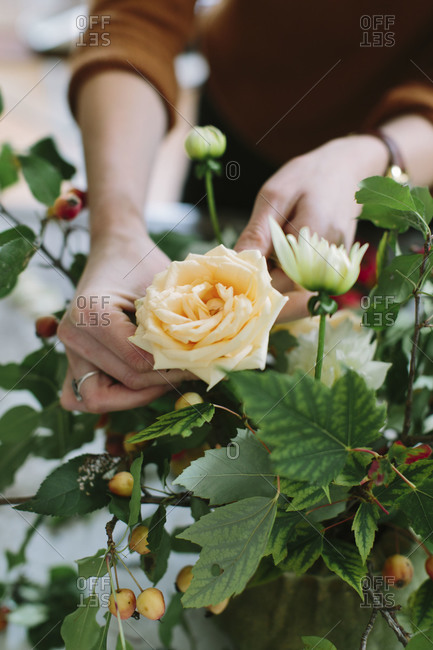 Designer inserts a peach rose into a flower arrangement with apple branches