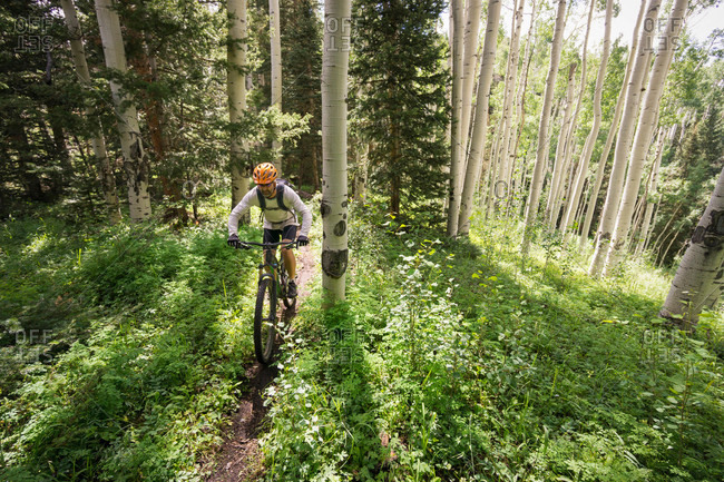 A man mountain biking on a trail in the Alta Lakes area near Telluride, Colorado