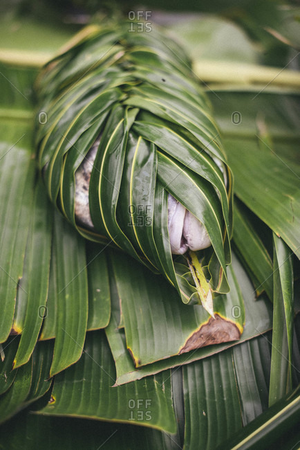 Fish wrapped in a braided palm frond for cooking