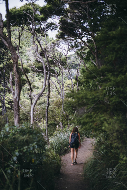 Woman walking on a nature trail in the forest