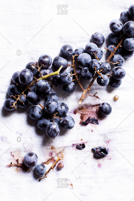 Grape cluster on white background