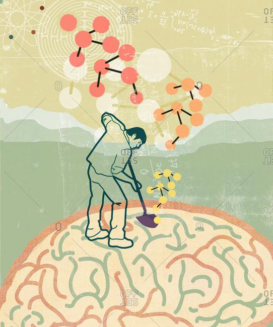 Man digging in a brain