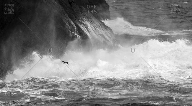 Antartica, South Atlantic - Offset Collection