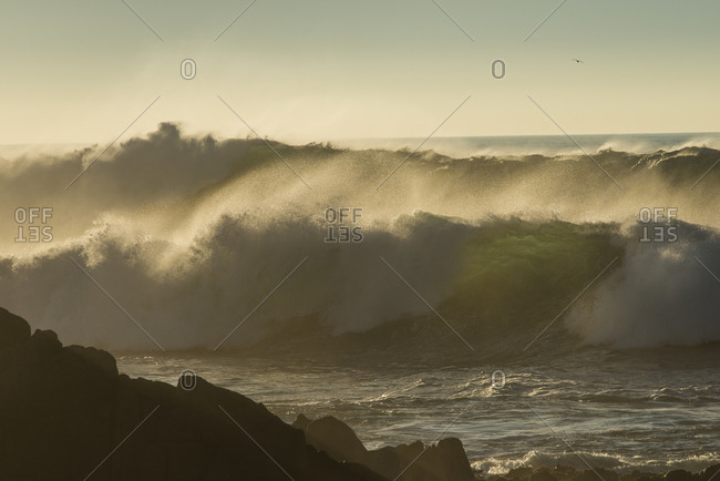 Huge winter waves crashing on rocks at sunset along Asilomar State Beach, Pacific Grove