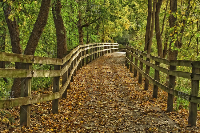 City hiking trail by the Wabash River