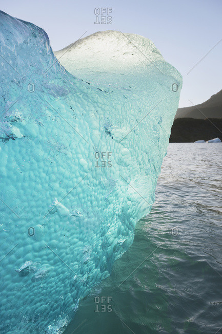 Iceberg broken off Mendenhall Glacier floating in Mendenhall lake, flipping over and exposing blue polished ice from being underwater, Juneau, Alaska, United States of America