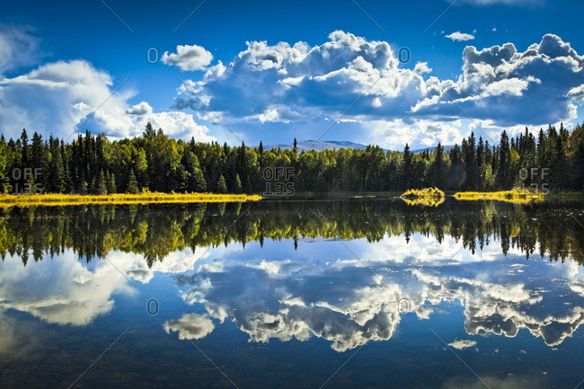 Clouds and boreal forest reflect on 48 Mile Pond, Chena River State Recreation Area, Fairbanks, Alaska, United States of America