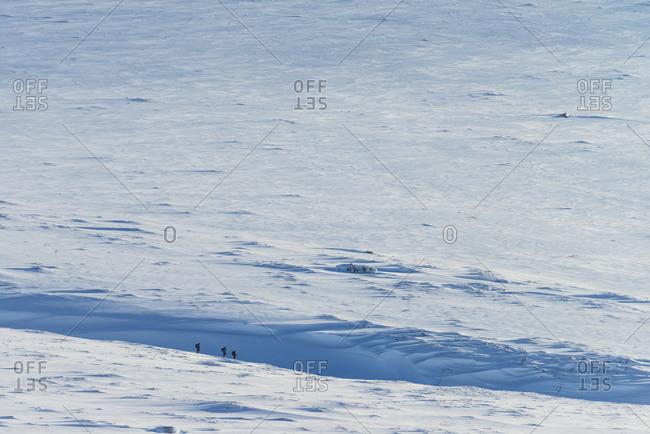 People descending through snowfield from Beinn a Chlachair, near Laggan, Scotland