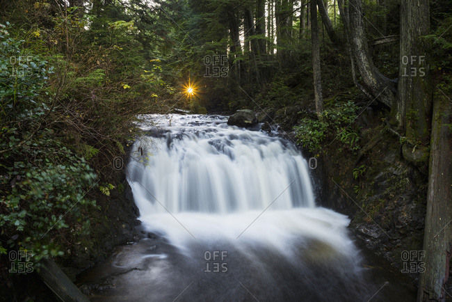 The setting sun creates a star effect shining through the treas above Rolley Falls, Rolley Lake Provincial Park in the Stave Falls area, Mission, British Columbia, Canada