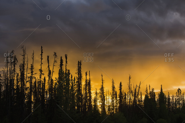 The setting sun lights up the clouds at sunset along the Yellowhead Highway in Northern British Columbia, British Columbia, Canada
